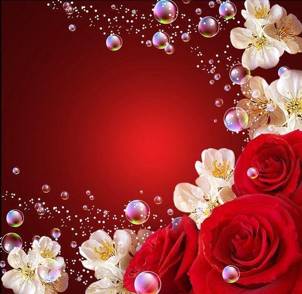 Fond Ecran Fleur