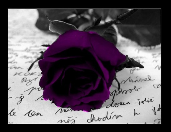 Image du Blog romanceetamitiee.centerblog.net