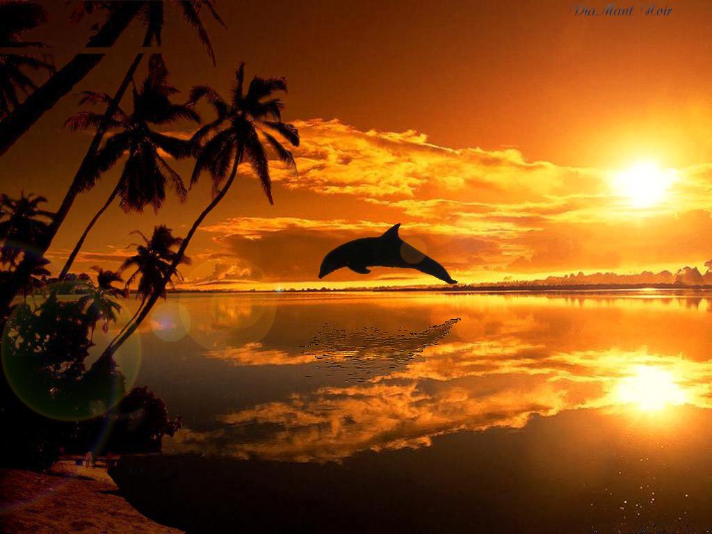 Couchers de soleil - Dessin du soleil ...